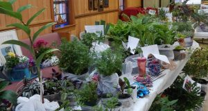 Garden Club Plant Auction @ New Castle United Methodist Church